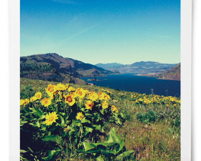 Mosier Plateau - Trail of the Month