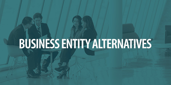 Business Entity Alternatives