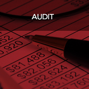 Isler NW Audit Services