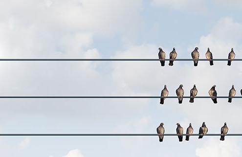 Theory of Disruption